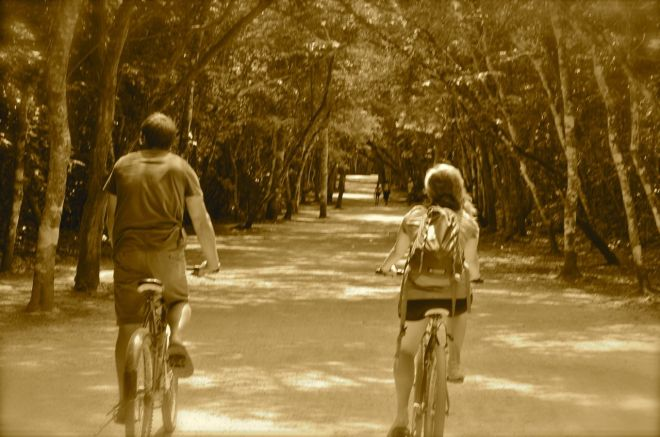 On The Mayan Road