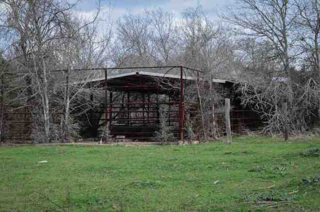 abandoned dairy cow run