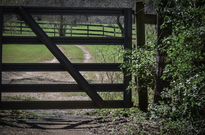 Heaven's Gate-2