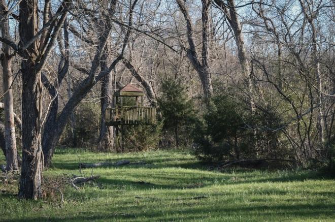 treehouse at Rita Ridge