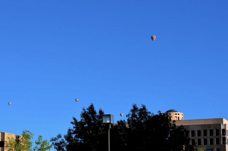 balloons over Albuquerque closeup