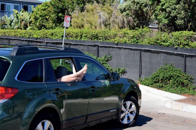 Molly No Parking in Santa Barbara