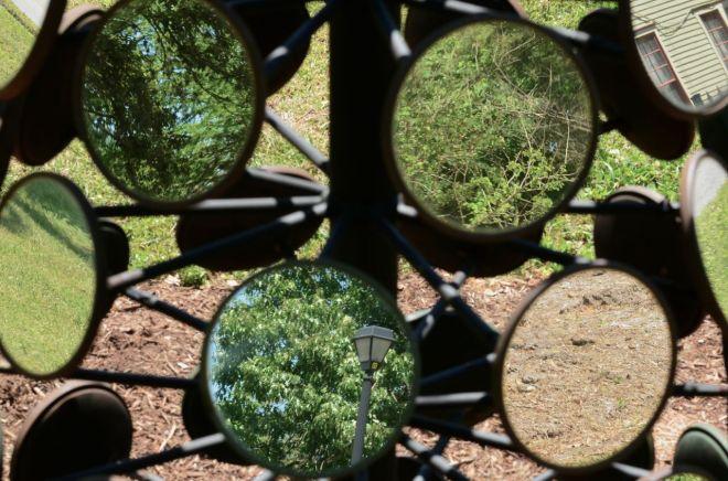 mirror tree bottom