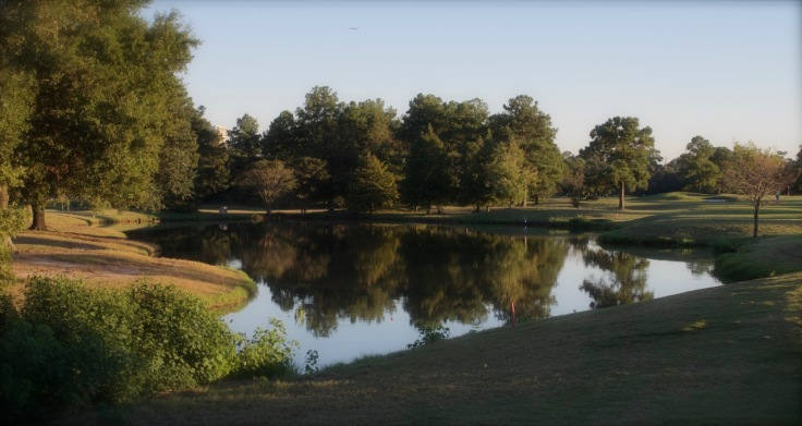 Reflections from the 17th Tee