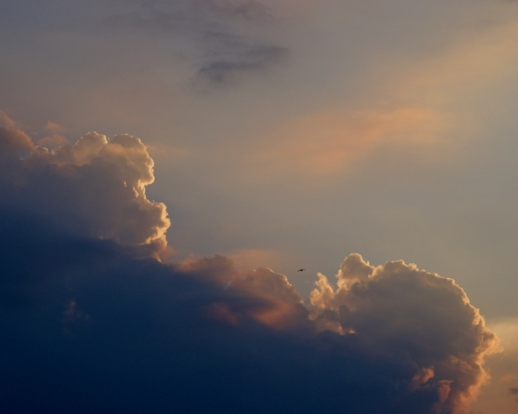 Western Sky from Buffalo Bayou Bridge at Allen Parkway