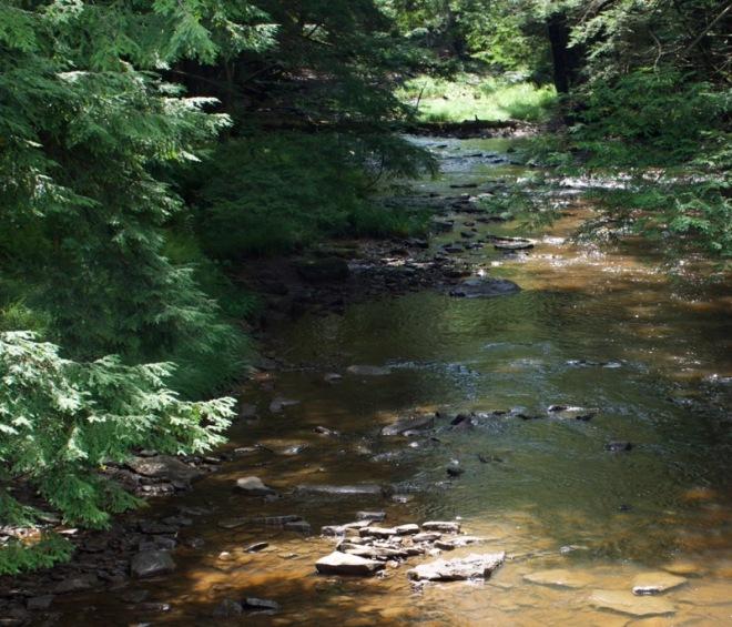 Blue Jay Creek