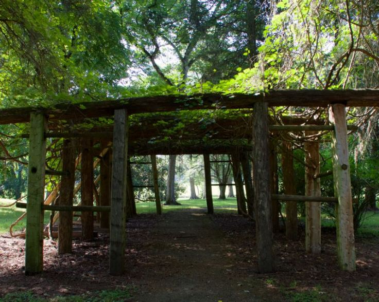 Grape Arbor - Historic Home Natchez Trace