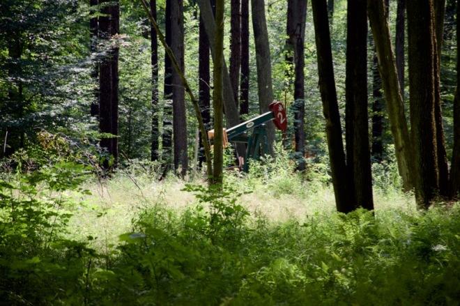 Jack pump in Allegheny Forest near Pigeon