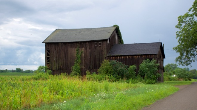 Old Barn Near Collins