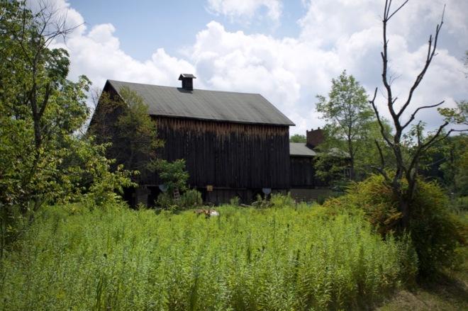 Old Barn off Blue Jay Road