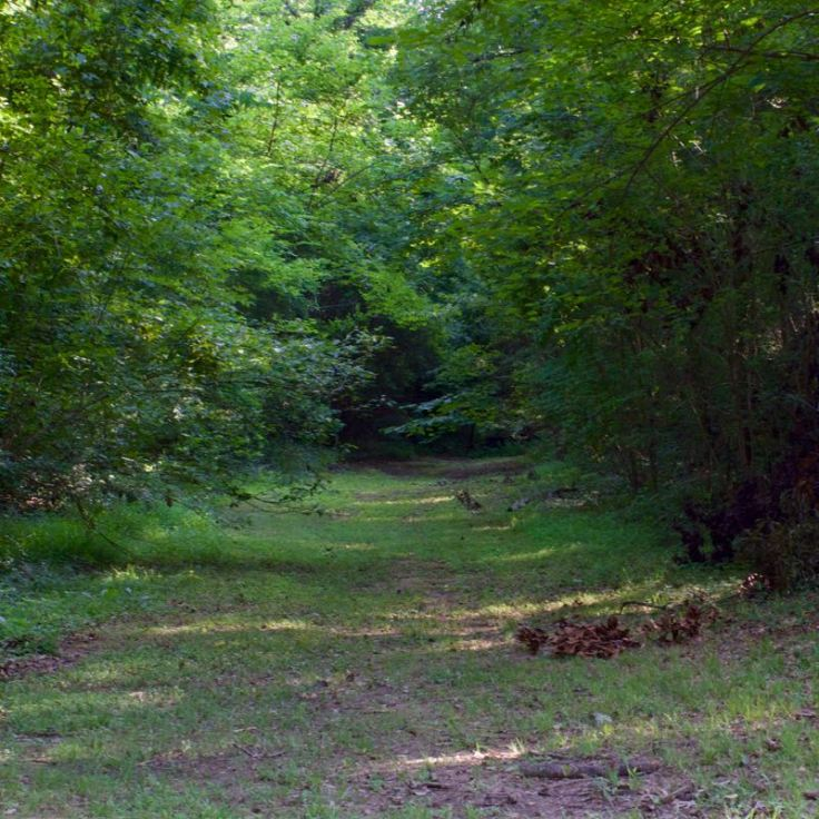 Original endpoint of the Natchez Trace