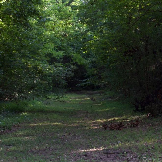 Original endpoint of the Natchez Trace