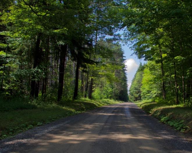 Watson Road - Pigeon - Pennsylvania