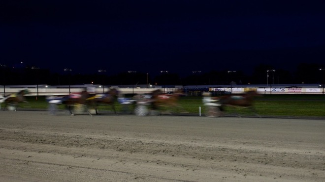 The Harness Race